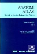 Anatomi Atlası Kemik ve Kaslar - Lokomotor Sistem Cilt: 1