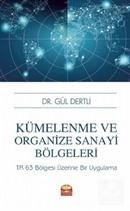 Kümelenme ve Organize Sanayi Bölgeleri: TR 63 Bölgesi Üzerine Bir Uygulama