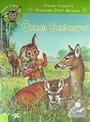 Afacan Tavşanla Ormanda Dört Mevsim Zeka Küpü Seti (4 Kitap)