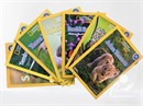 National Geographic Kids Okul Öncesi Set (7 Kitap)
